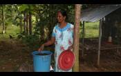 Aplicando los principios de la Forestería Análoga, Peter Nalini en Sri Lanka hace vermicompost para mejorar la calidad del suelo